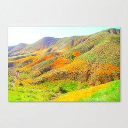 Poppy Super Bloom Rainbow Canvas Print
