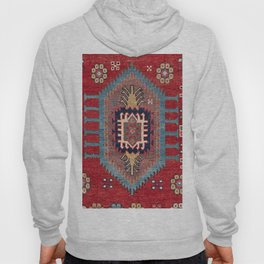 Tribal Honeycomb Palmette II // 19th Century Authentic Colorful Red Flower Accent Pattern Hoody