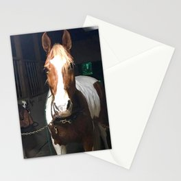 Horse Brown White Stationery Cards