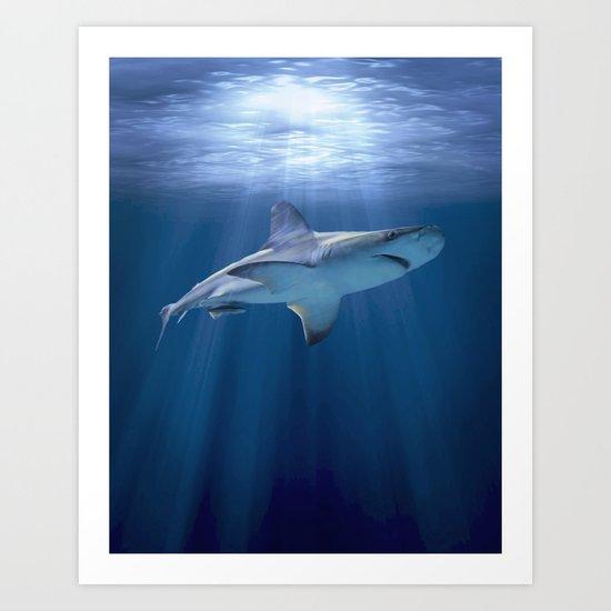 Cruising Shark Art Print