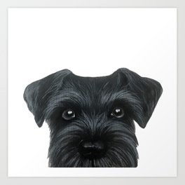Black Schnauzer, Dog illustration original painting print Art Print