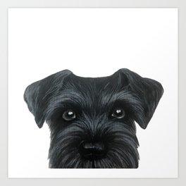 Black Schnauzer, Dog illustration original painting print Art Print