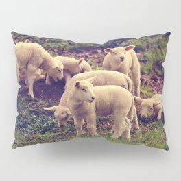 Lambs Pillow Sham