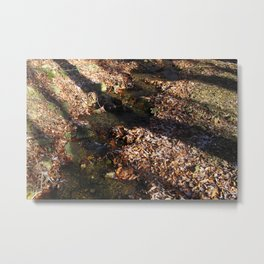 Shadow on the stream Metal Print