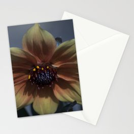 Longwood Gardens - Spring Series 193 Stationery Cards