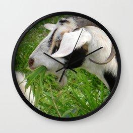 Billy Goat Horns Wall Clock