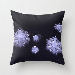 an ephemeral perspective Throw Pillow