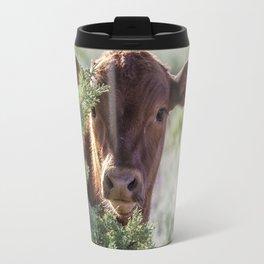 Shy Calf Travel Mug
