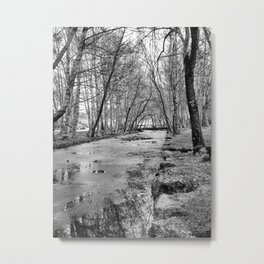 Iced Stream Metal Print