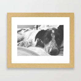 LAZY DAY JAXX Framed Art Print