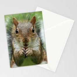 Sciurus-carolinensis Stationery Cards