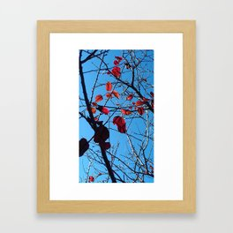 Fall Leaves 2 Framed Art Print