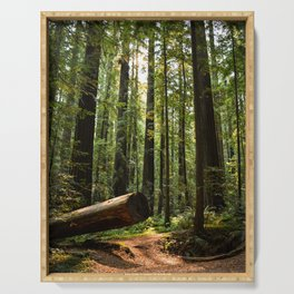 Humboltd Redwoods State Park Serving Tray