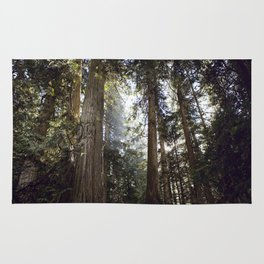 British Columbia Forest Rug