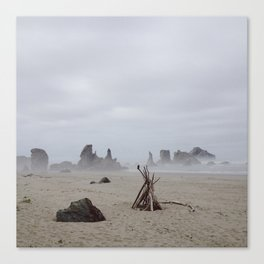 Bandon Beach Bird Canvas Print