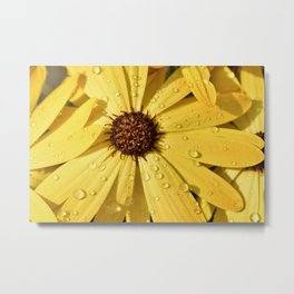 Yellow Petals Flower Metal Print