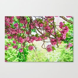 Fresh Blossoms Canvas Print
