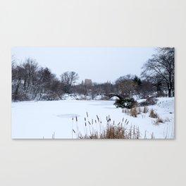 Snow in Central Park VIII Canvas Print