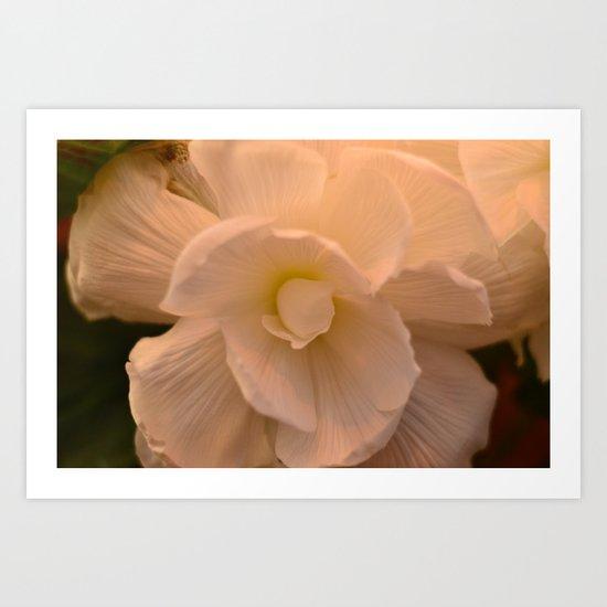 Grecian Flora Art Print