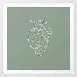 Anatomical Heart Illustration Art Print