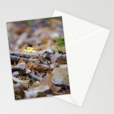 Seedling - B Stationery Cards