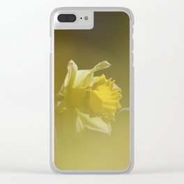 Yellow Daffodils Clear iPhone Case