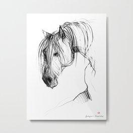 Old Horse Metal Print