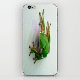 Green Tree Frog iPhone Skin