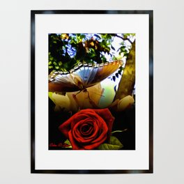 The Butterfly And The Rose Framed Poster