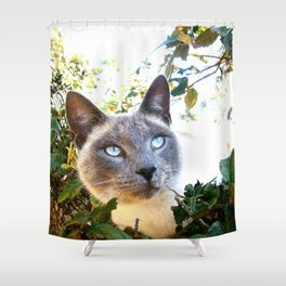 Siamese Cat in Tree Shower Curtain