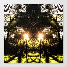 DMT Ferntree Forest Canvas Print
