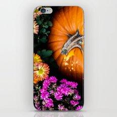 Autumn Still Life iPhone Skin