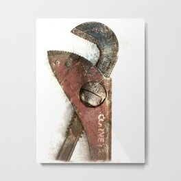 Gape Metal Print