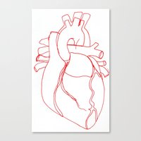 anatomical heart Canvas Prints featuring Anatomical heart by Laurel Howells