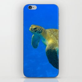 Wildlife: Green Turtle I iPhone Skin