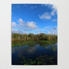 Blue Hour In The Everglades Poster