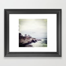 La Jolla Seagulls Framed Art Print