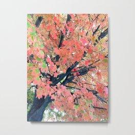 colorful autumn leaf Metal Print