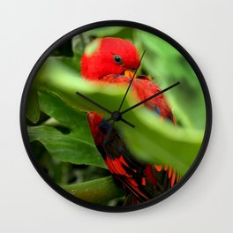 Red Lory Wall Clock