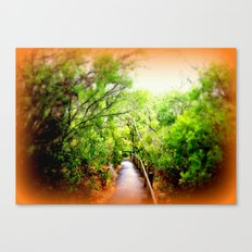 Path leading to Nelson River Canvas Print