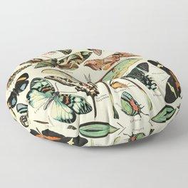 French Vintage Butterflies Chart Adolphe Millot Papillons Larousse Pour Tous  Floor Pillow
