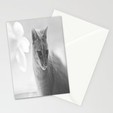 Winford Kitty Stationery Cards