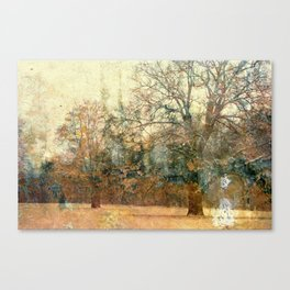The Love of Trees Canvas Print