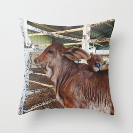 Cute Calves Throw Pillow