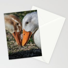 Dueling Duckies Stationery Cards