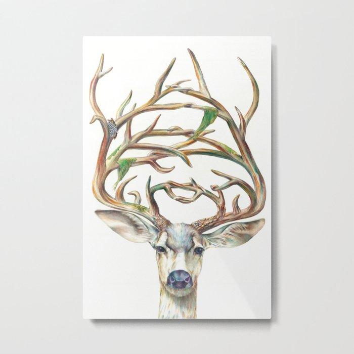 Buck Metal Print