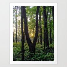 SlingShot Art Print