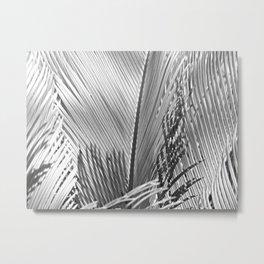 Palms Monochrome Metal Print