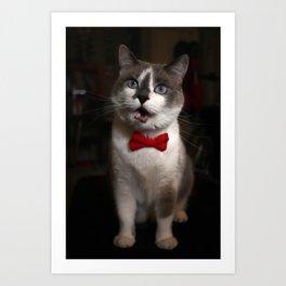 Cat in a bowtie, screaming Art Print