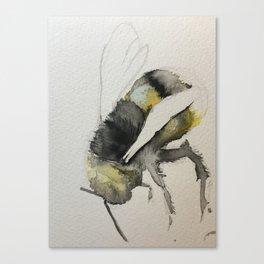 Buzzy Little Bee Canvas Print